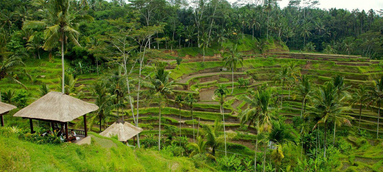 Blahbatuh, Gianyar Regency, Bali, Republic of Indonesia