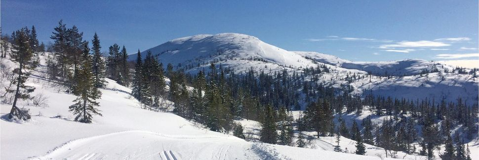 Telemark, Norwegen