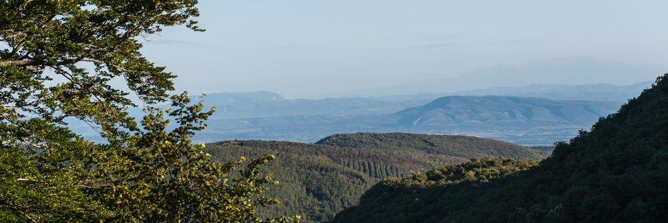 Riols, Minervois Saint-Ponais Orb-Jaur, Occitanie, France