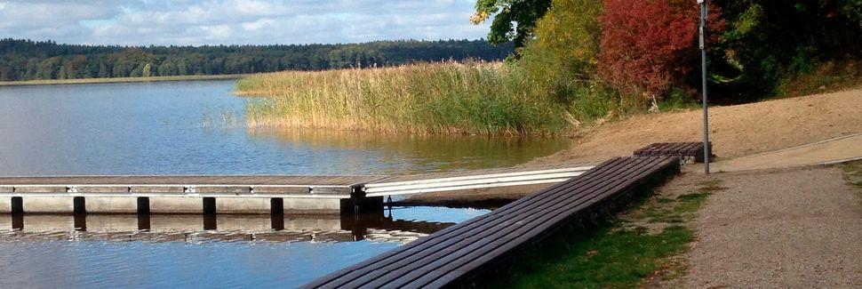 Blankensee, Mecklenburger Seenplatte, Mecklembourg-Poméranie-Occidentale, Allemagne