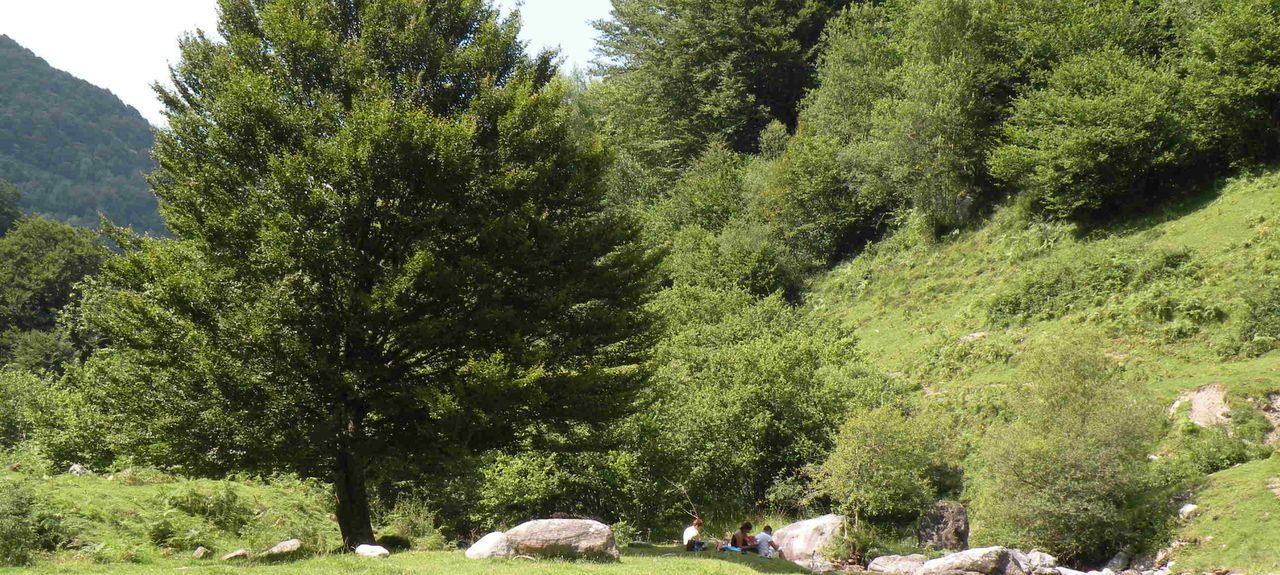 Argein, Occitanie, France