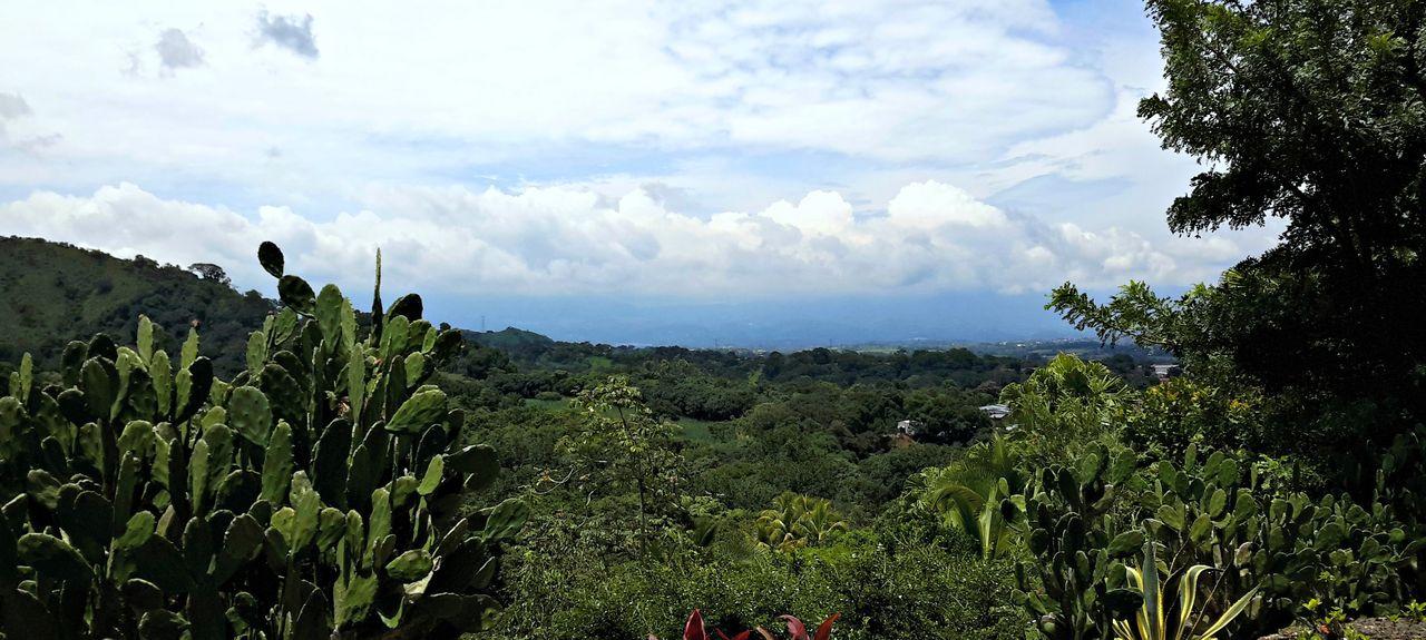 Angeles Sur, Alajuela Province, Costa Rica