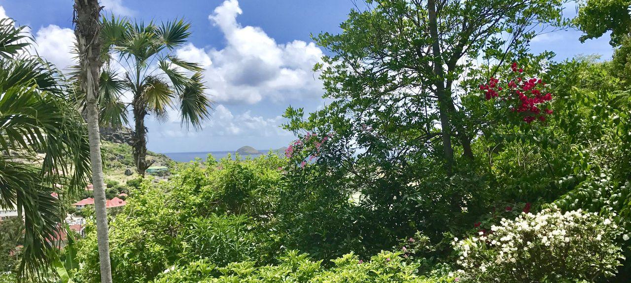Anse des Cayes, Leeward, Saint-Barthélemy