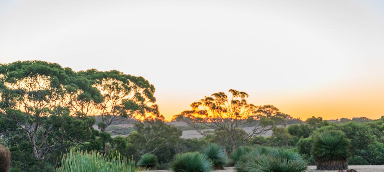 Cassini, SA, Australia