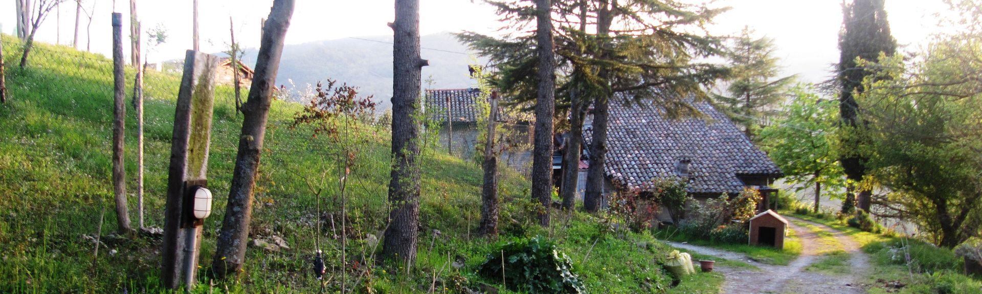 Sasso Marconi, Sasso Marconi, Emilia-Romagna, Italia