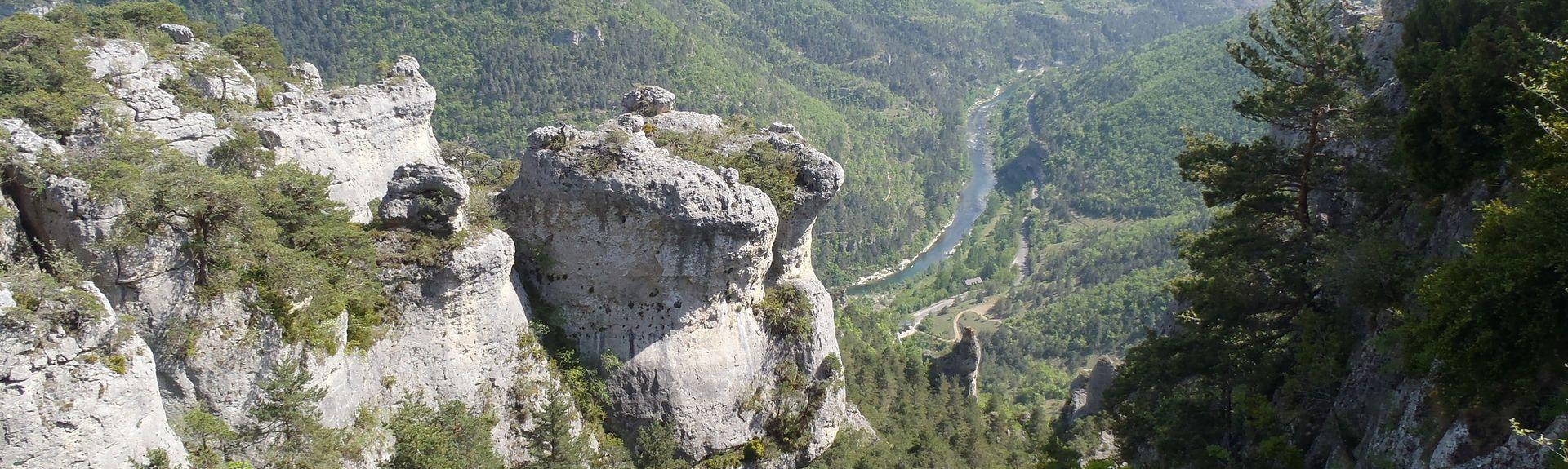 Gorges du Tarn (rotko), Saint-Pierre-des-Tripiers, Occitanie, Ranska