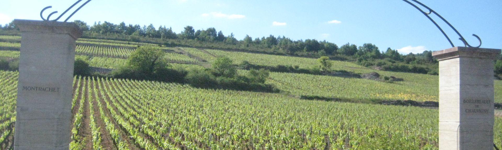 Beaune, Bourgogne-Franche-Comté, Frankrig