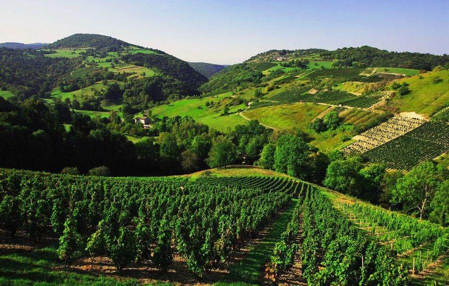 Cormaranche-en-Bugey, Auvergne-Rhône-Alpes, Frankrijk