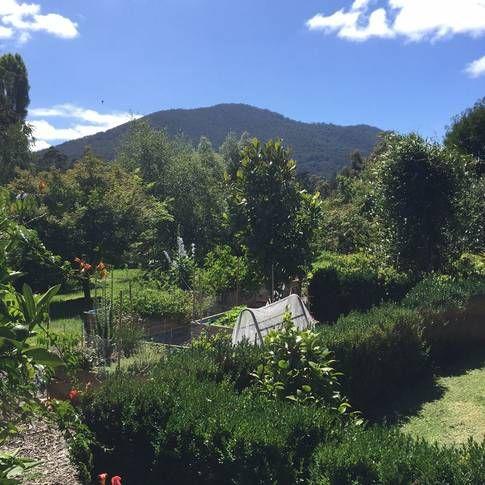 Toolangi, VIC, Australia