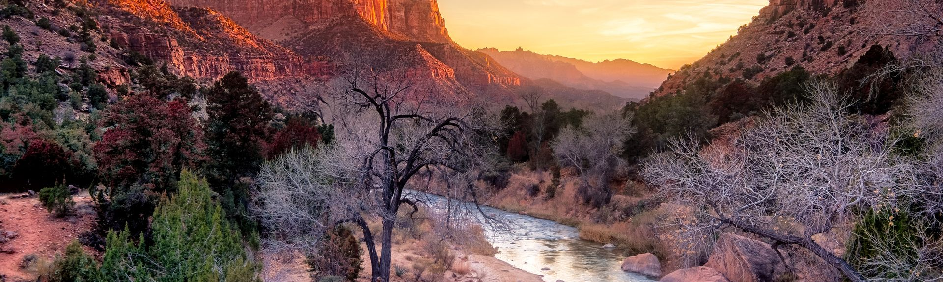 Zion National Park, Springdale, Utah, United States of America