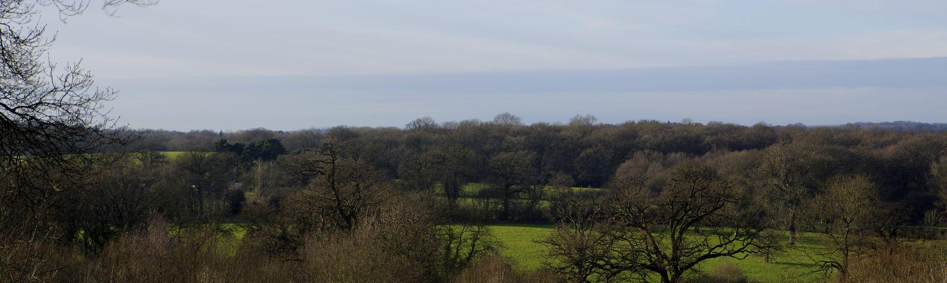 Whitchurch, Περιφέρεια Μπέιζινστοουκ εντ Ντιν, Αγγλία, Ηνωμένο Βασίλειο