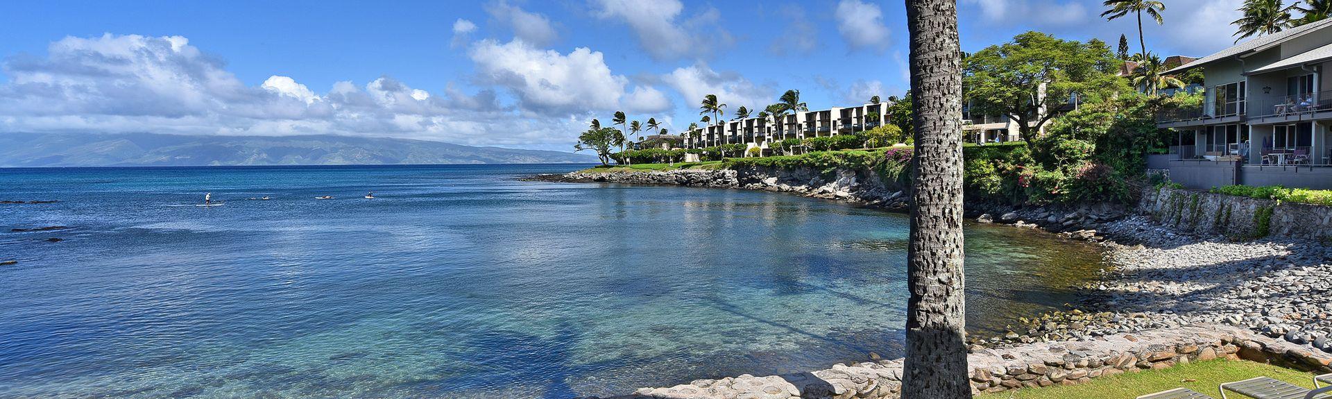 Honokeana Cove (Lahaina, Hawaii, Stati Uniti d'America)