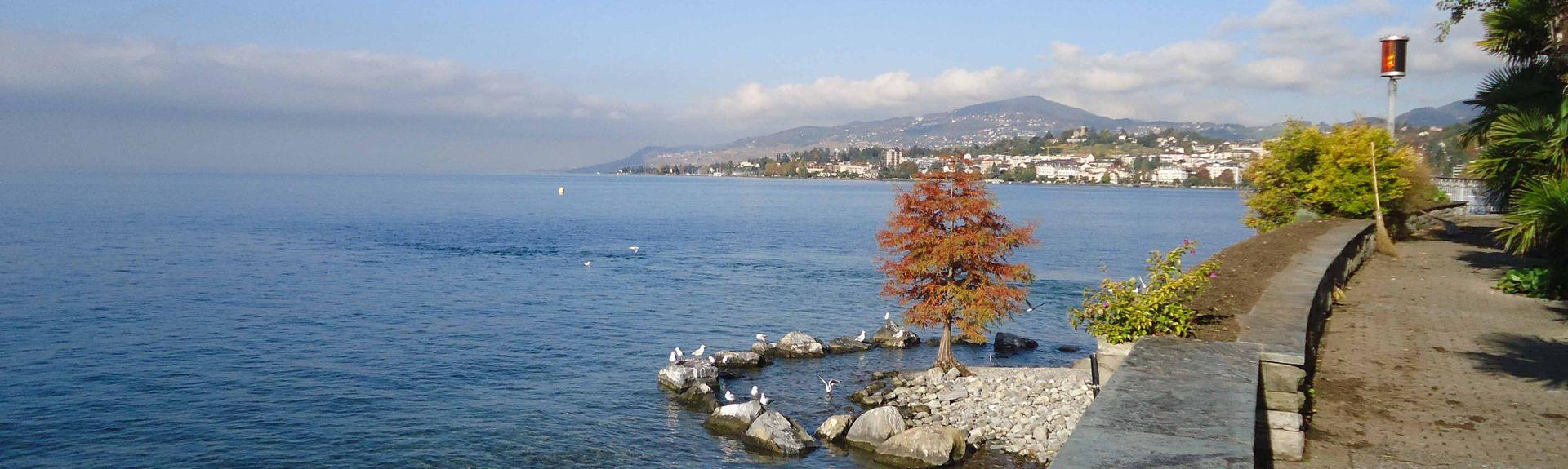 Palézieux, Cantón de Vaud, Suiza