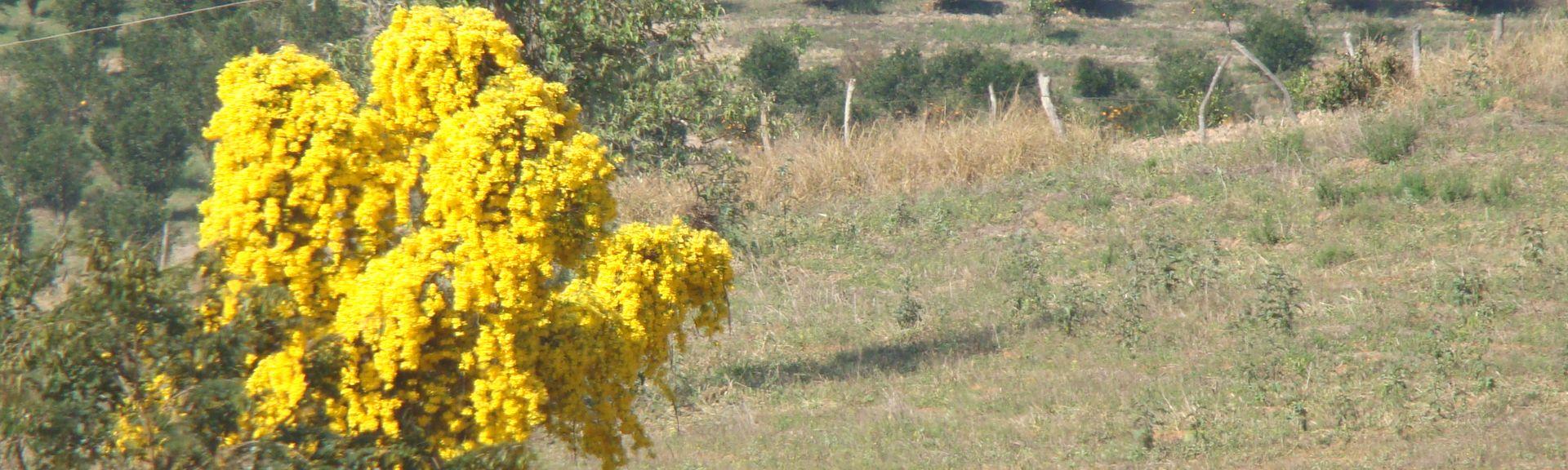 Brumadinho, State of Minas Gerais, Brazil