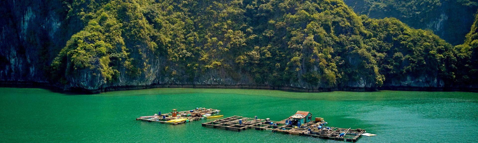tp. Hạ Long, Quảng Ninh, Vietnam