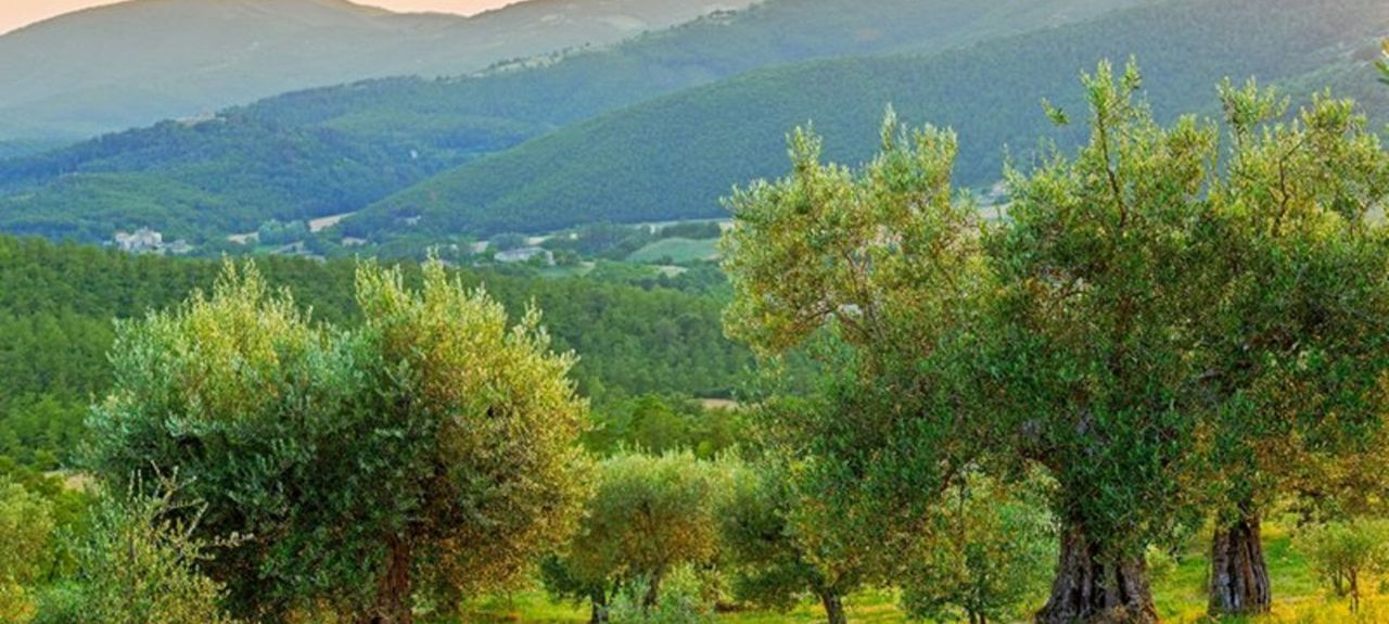 Preggio, Perugia, Umbria, Italy