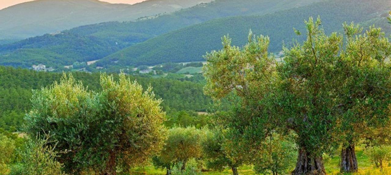 Magione, Umbria, Italia