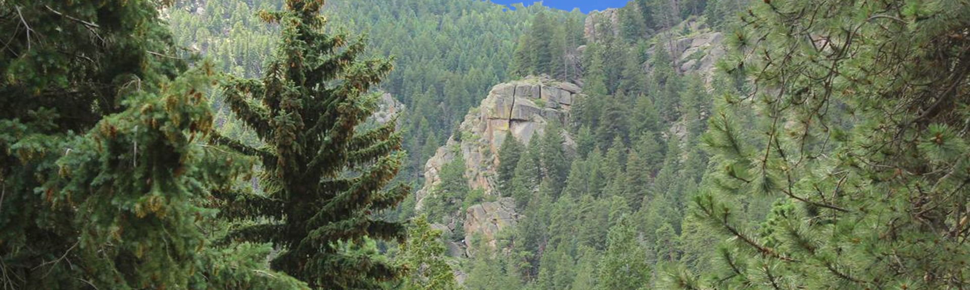 Vrbo 174 Manitou Springs Co Vacation Rentals Reviews