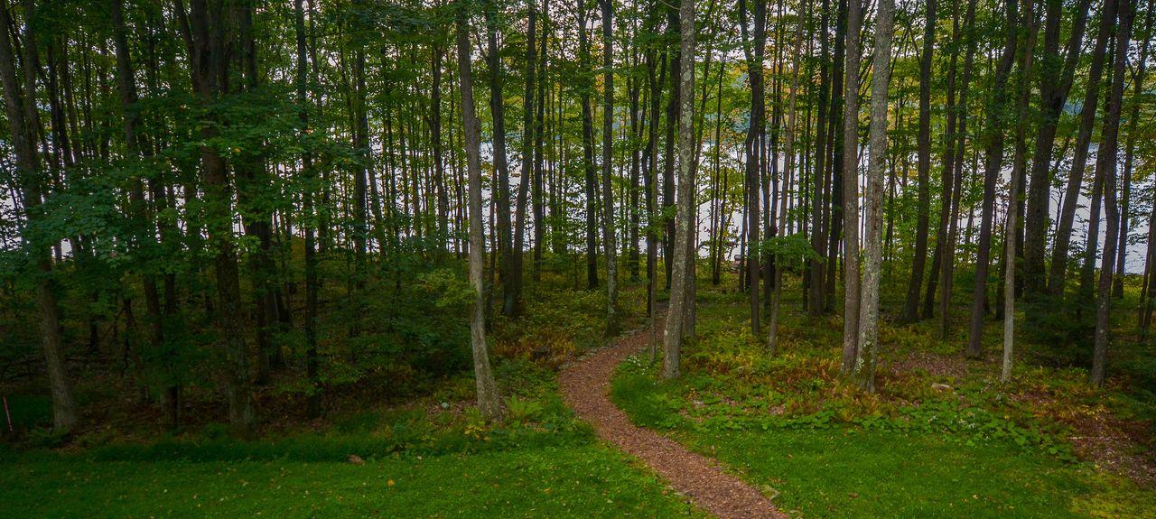Deep Creek Lake State Park, Swanton, MD, USA