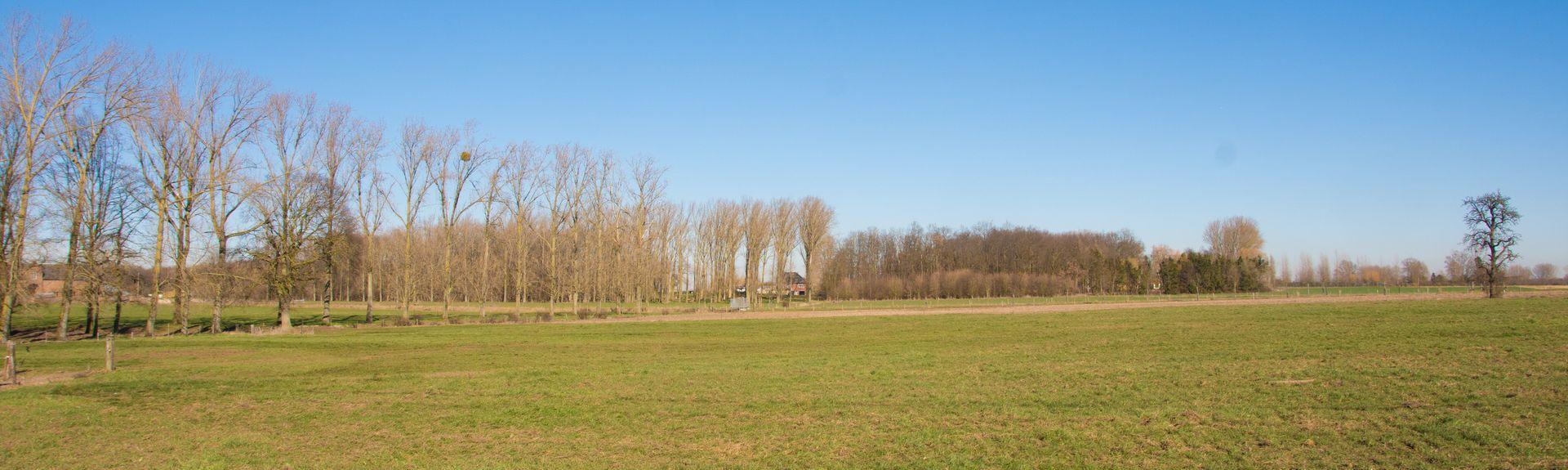 Genk, Vlaanderen, BE