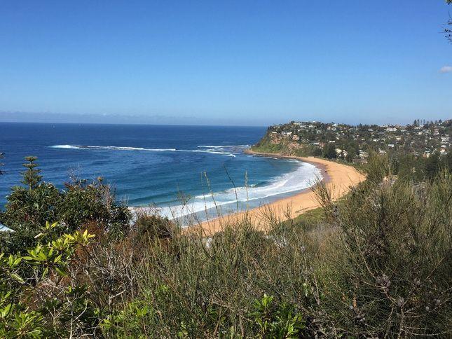 Whale Beach NSW, Australia