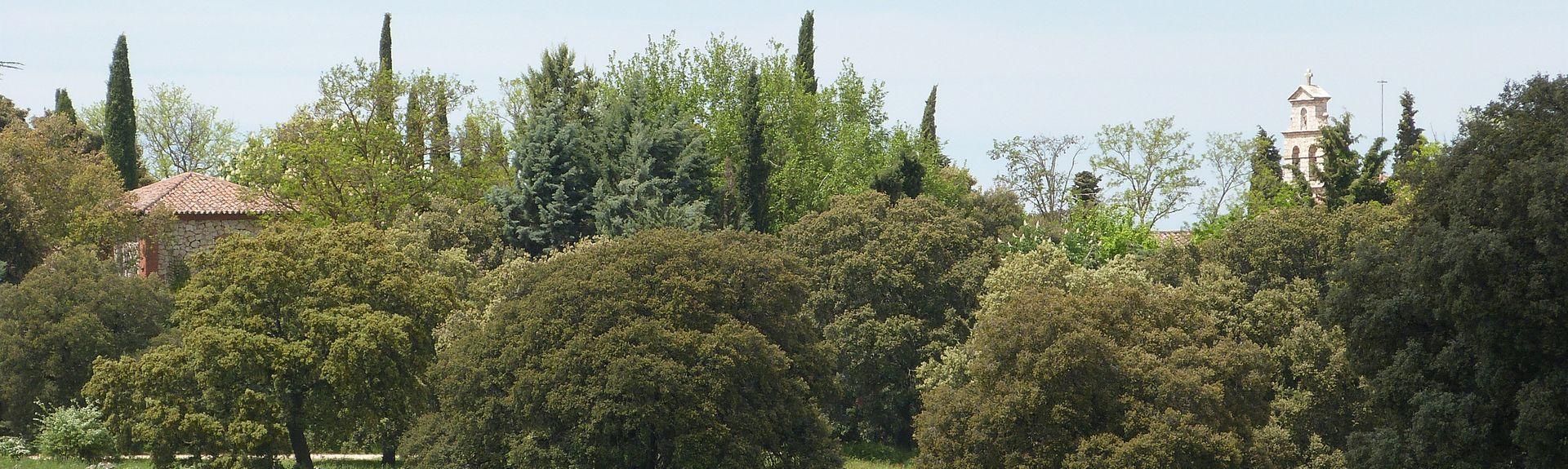 Loranca de Taju単a, Castille-La Manche, Espagne