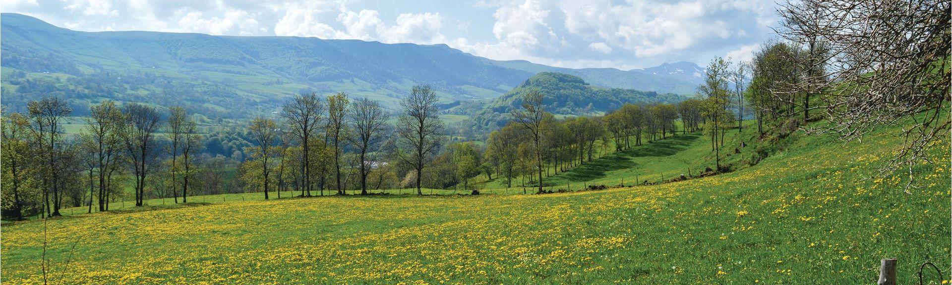 Salers, Auvernia-Ródano-Alpes, Francia