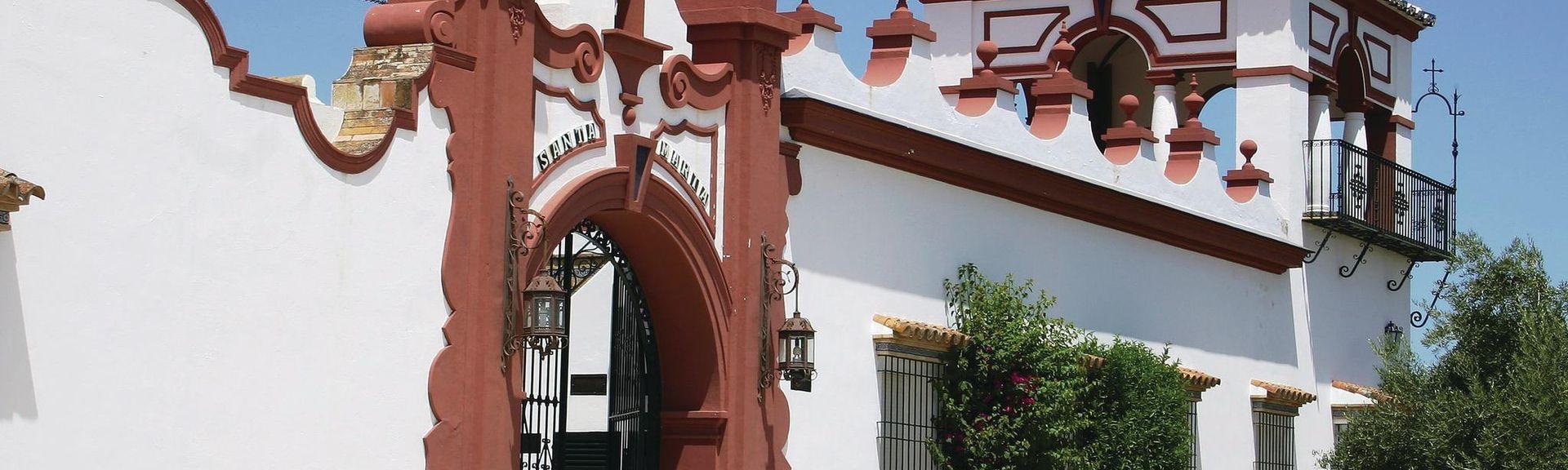 Zufre, Andalusië, Spanje