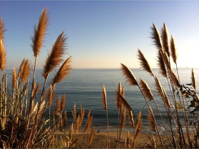 Rio Del Mar Beach, Aptos, CA, USA
