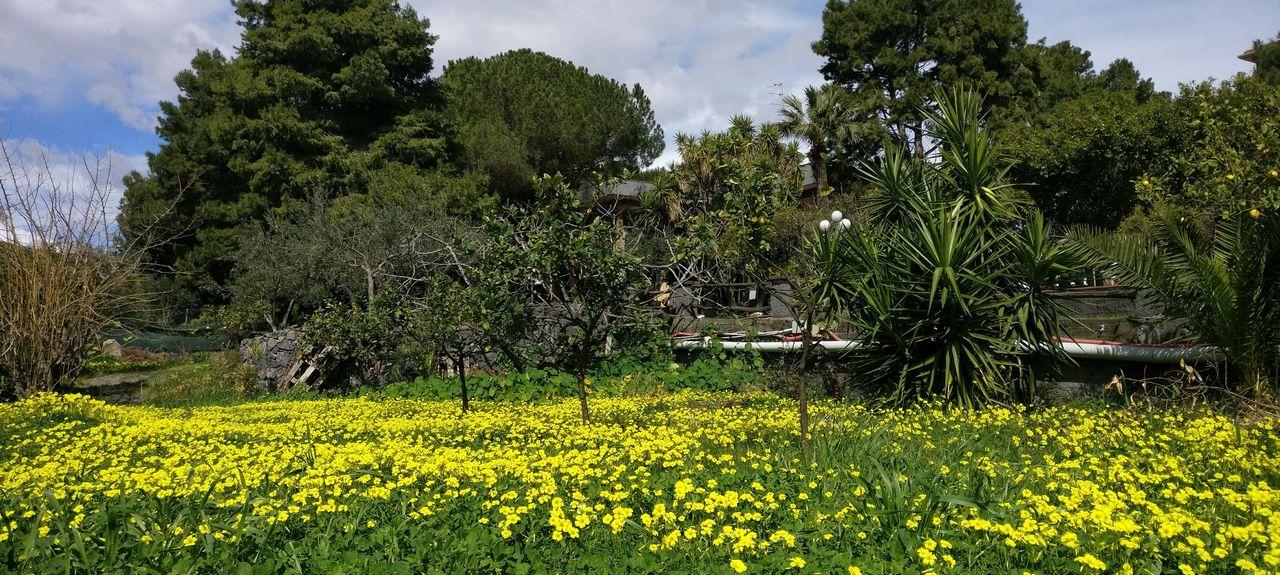 Spiaggia di Recanati, Giardini Naxos, Sicilia, Italia