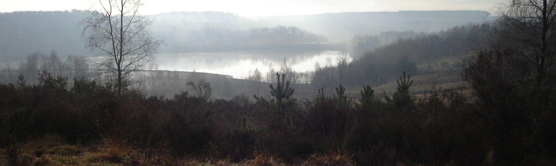 Maaseik, Flämische Region, Belgien