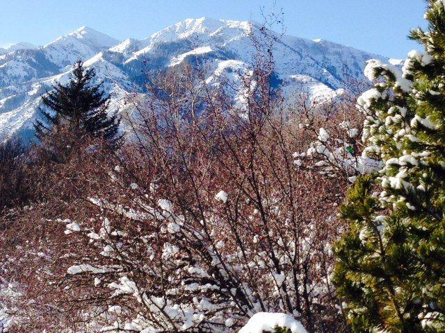 Kaysville, Utah, États-Unis d'Amérique