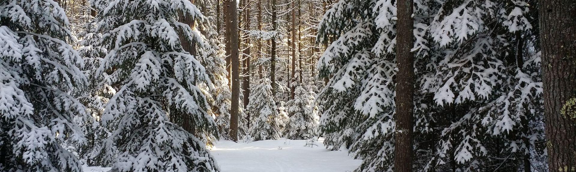 Woodruff, Wisconsin, Verenigde Staten