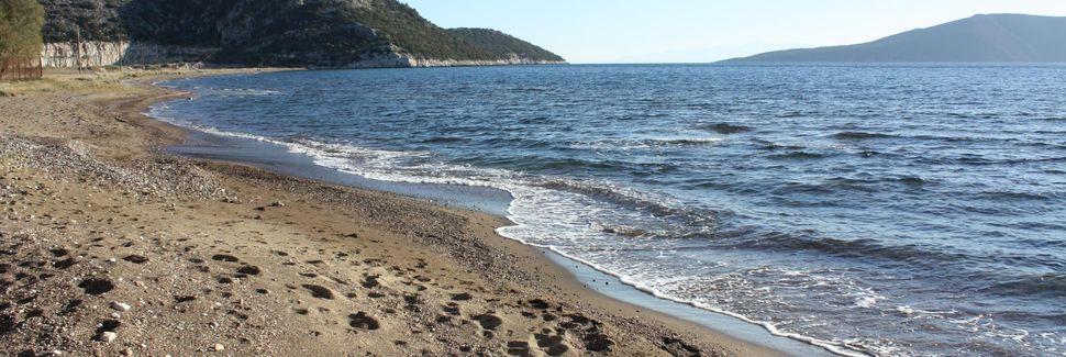 Ασίνη, Πελοπόννησος, Ελλάδα