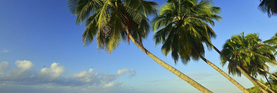 Sugar Hill, Parish of St. Joseph, Barbados