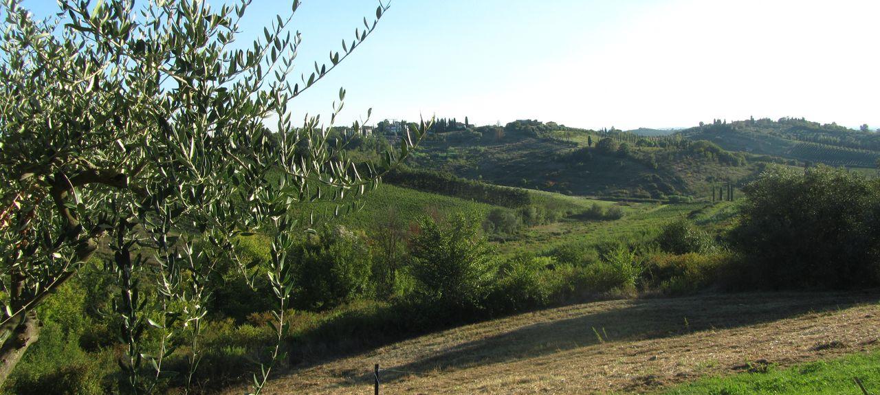 Poggio Alla Cavalla, Pistoia, Tuscany, Italy