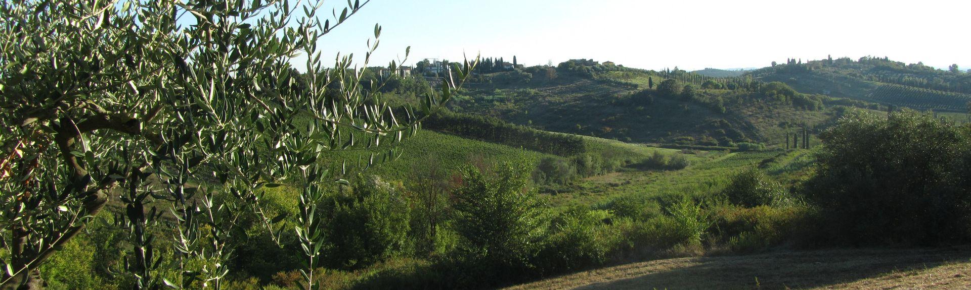 Serravalle Pistoiese, Pistoia, Tuscany, Italy