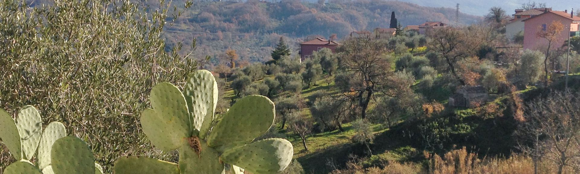 Acerno, Salerno, Campania, Italy