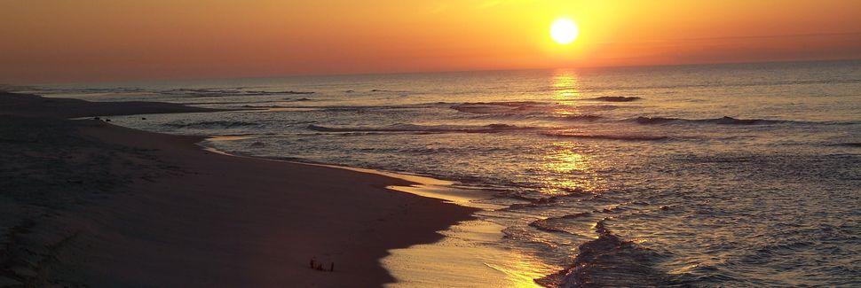 The Rookery (Gulf Shores, Alabama, Stati Uniti d'America)