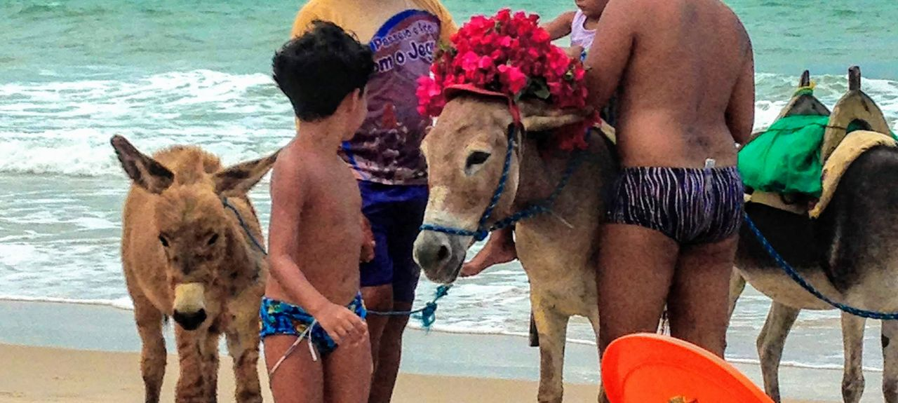 Majorlandia Beach, Aracati, Brazil