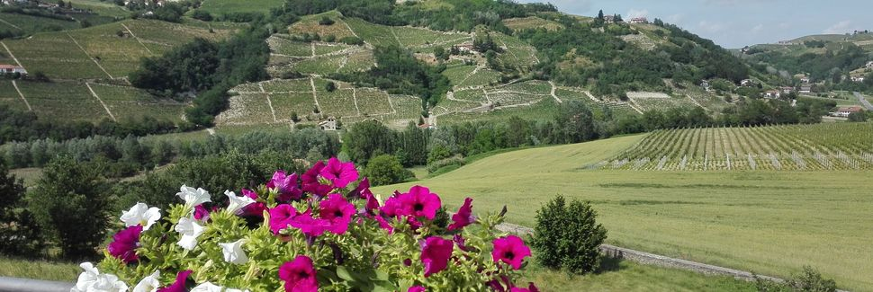 Castino, Piémont, Italie