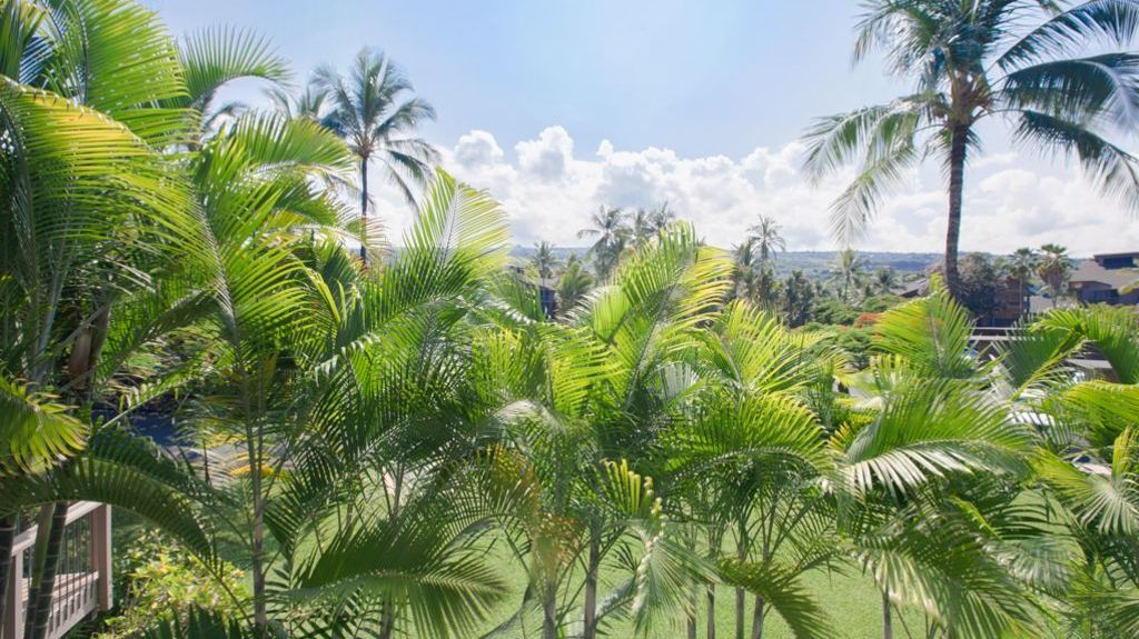 Kanaloa at Kona (Kailua-Kona, Havaí, Estados Unidos)