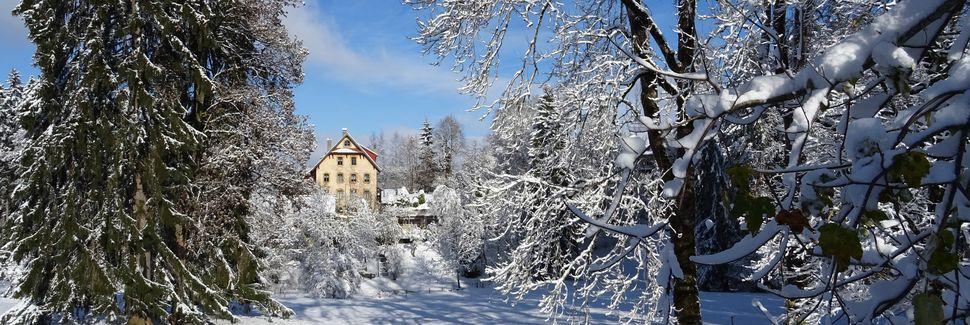 Neuchatel, Kanton Neuchâtel, Schweiz