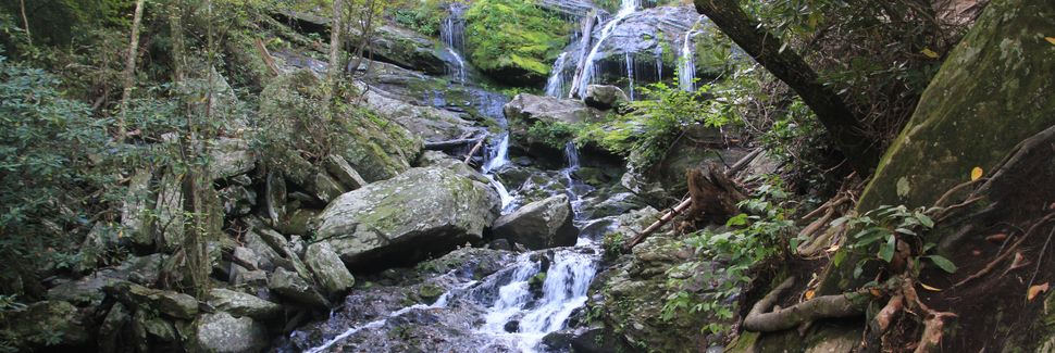 Biltmore Forest, Asheville, North Carolina, USA
