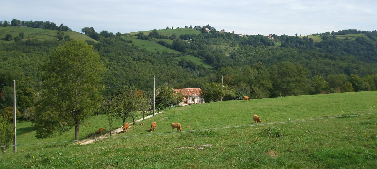 Villeneuve, Ariège, Occitania, Francia