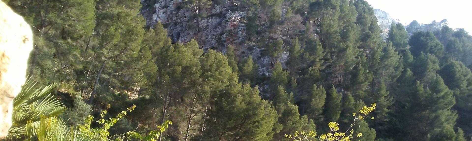 Puigpunyent, Balearic Islands, Spain