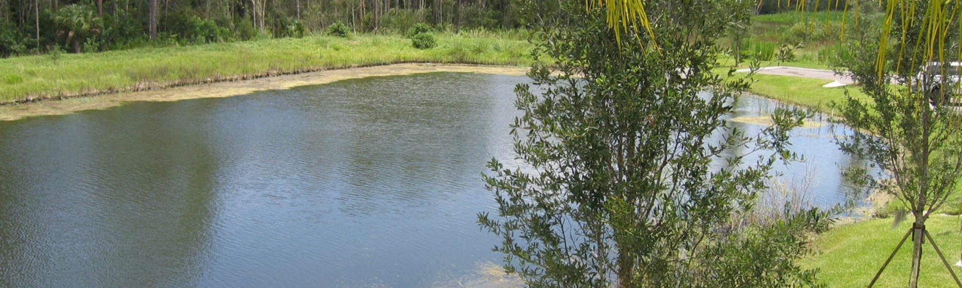 Reserva del rancho Babcock, Punta Gorda, Florida, Estados Unidos