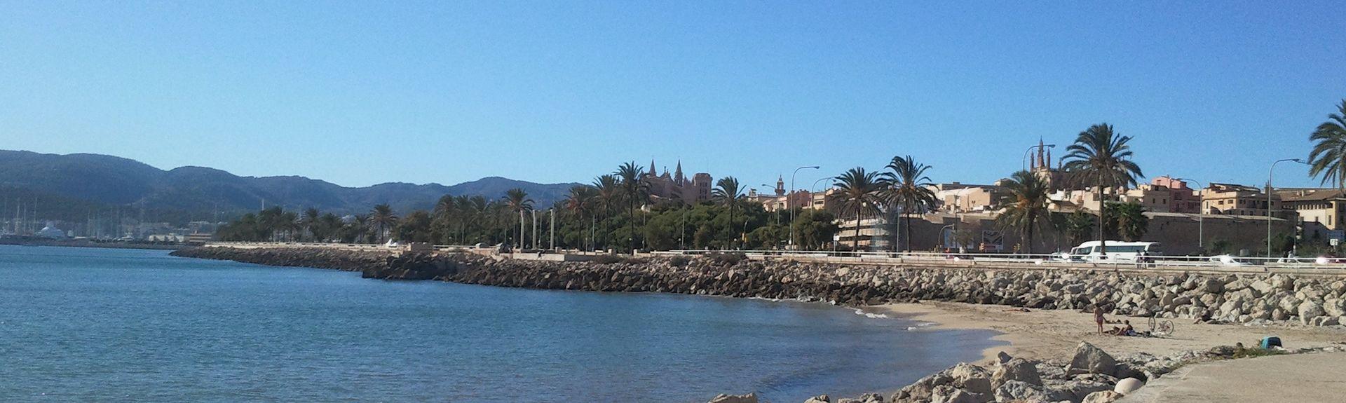 Paseo Maritimo, Palma, Balearic Islands, Spain