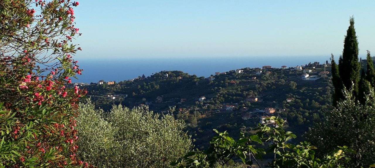 Bordighera, Imperia, Liguria, Italy