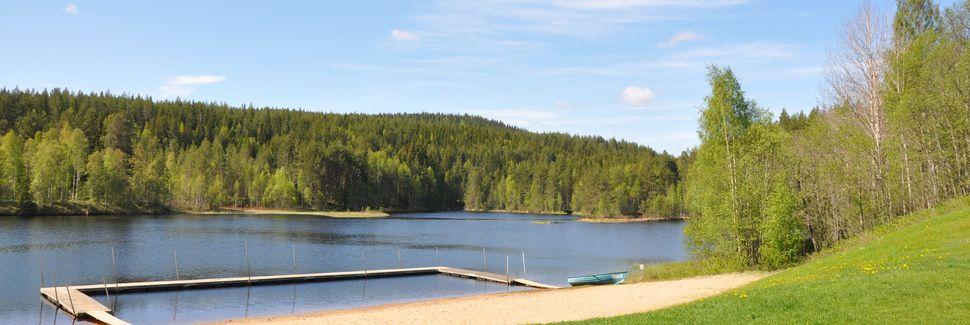 Gävleborgs län, Sverige